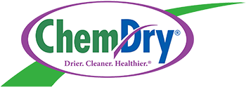 Professional Carpet Amp Upholstery Cleaning In Fayetteville Ar