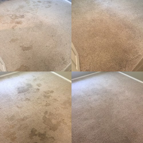 dirty and clean carpet cleaning results in Fayetteville AR