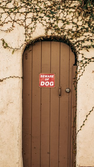 beware of dog red sign on wooden door in Fayetteville Ar